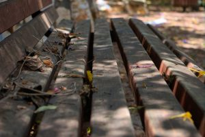 abandoned-park-bench from publicdomainpictures. net. Thank you Marina Shemesh.