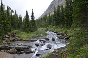 picture of a creek in the mountains